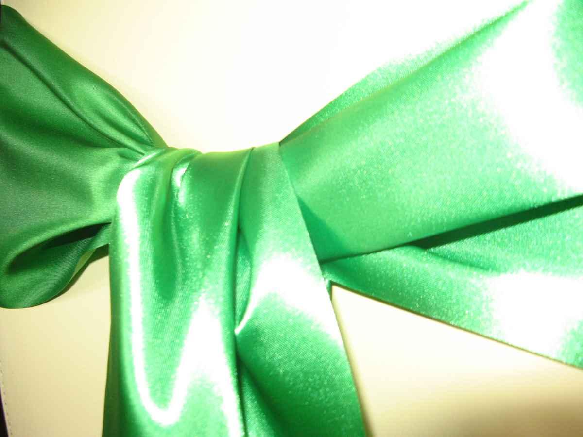 saténová mašľa 16cm zelená - 13 - 3.obr. - evkakvety-eshop.eu