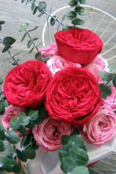 Kytica zo stabilizovaných kvetov obr.2 - evkakvety-eshop.eu