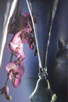 Váza dvojstranná 60cm - evkakvety-eshop.eu